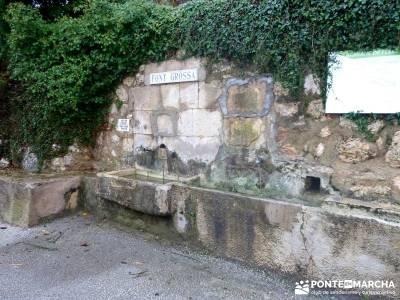 Montgó - Catedral Senderismo- Cova Tallada; monasterio de paular bosques magicos fotos cascadas